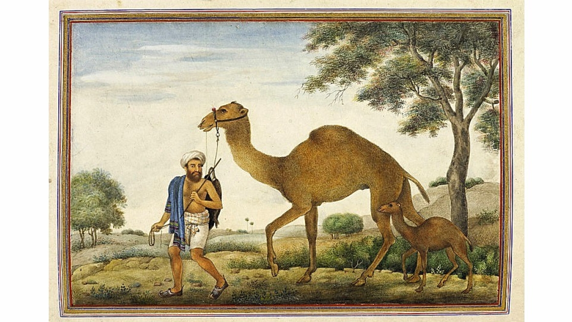 Painting of a Rabari man from 1825