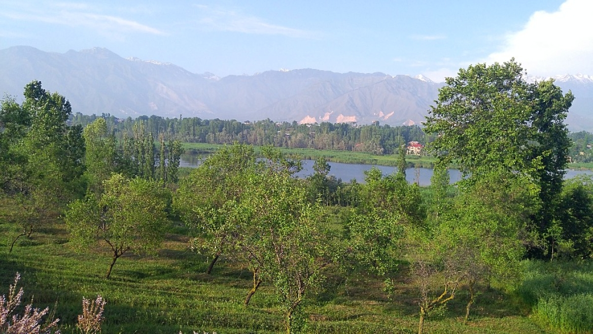 Valleys of Pampore