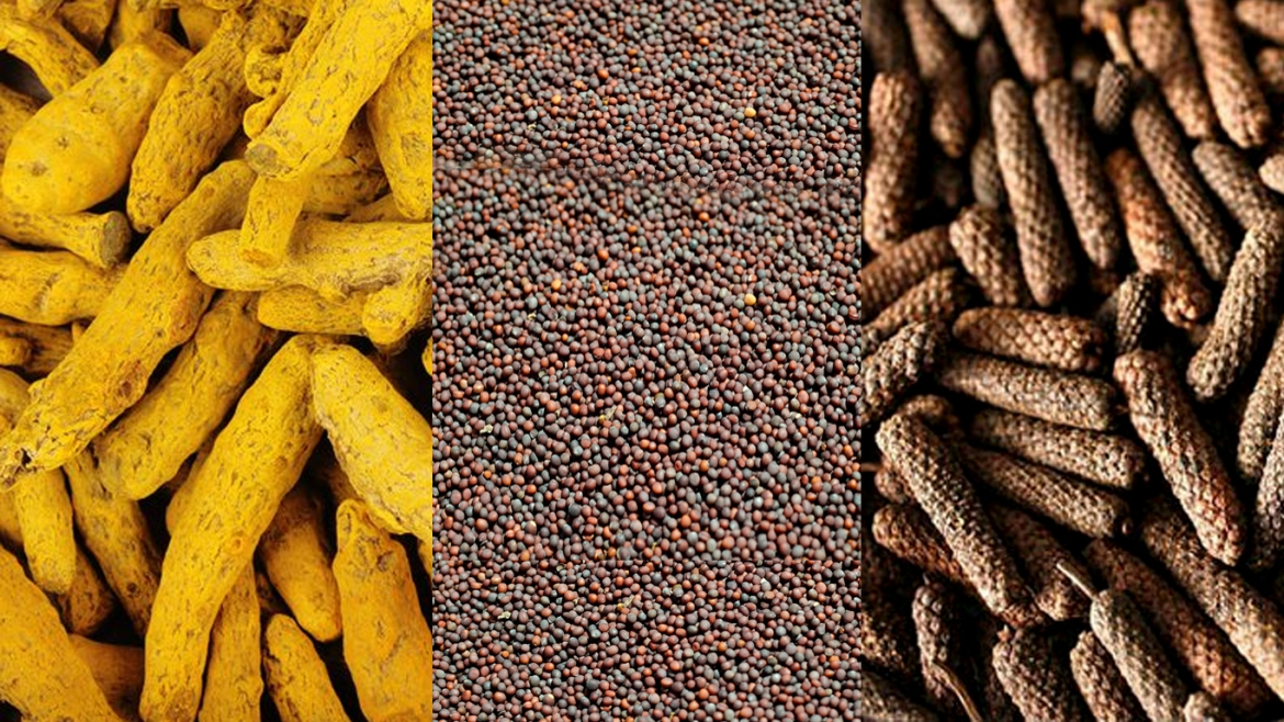 Indian spices - turmeric, mustard seed and, long pepper (L-R)