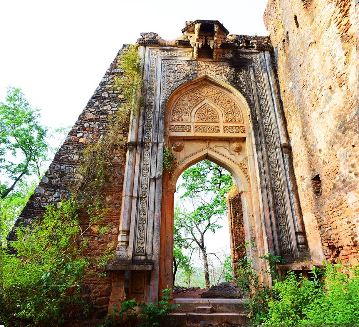 Nagpuri Gate, New Fort