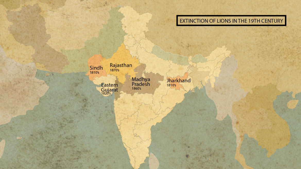 Extinction of lions from rest of India except Gir in the 19th century