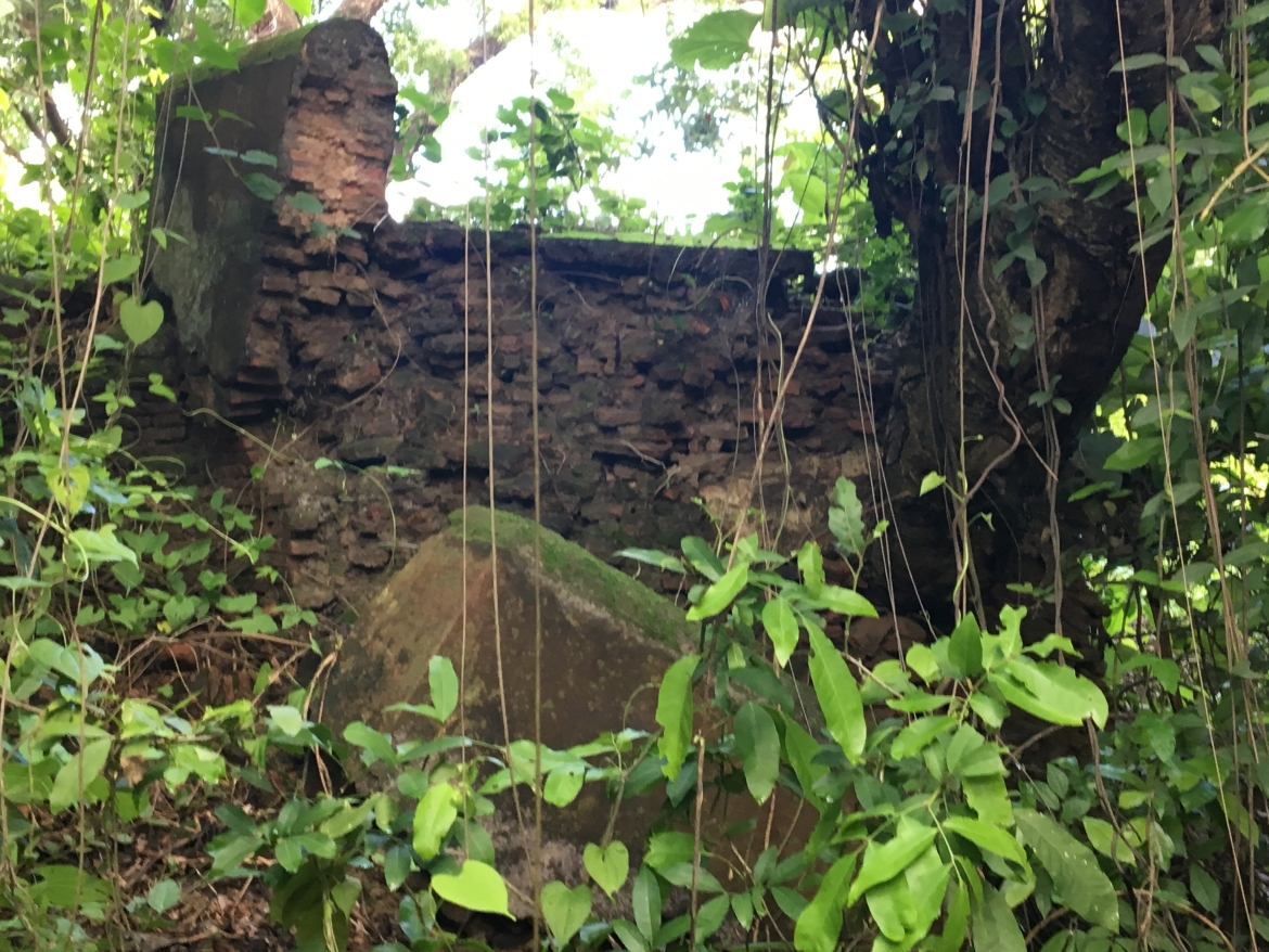 Boundary wall of 18th century graveyard, Pilibhit