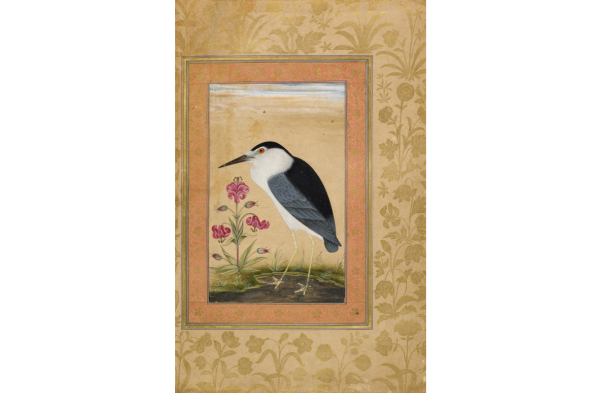 Emperor Jahangir: The Naturalist