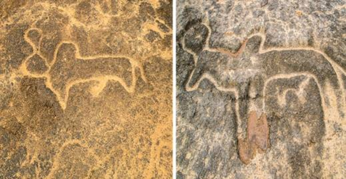 Petroglyphs on the banks of the River Kushavati