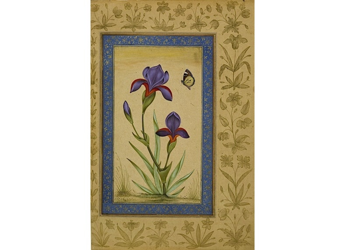 A Blue Iris With Butterfly Alighting
