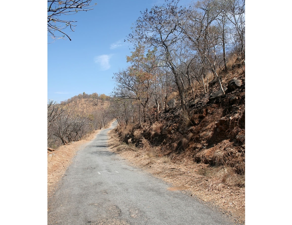 Road to Talakadu