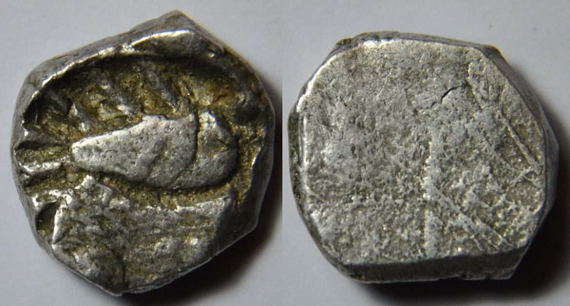 A silver coin from Avanti dated 400-312 BC with the symbol of a fish on the obverse side
