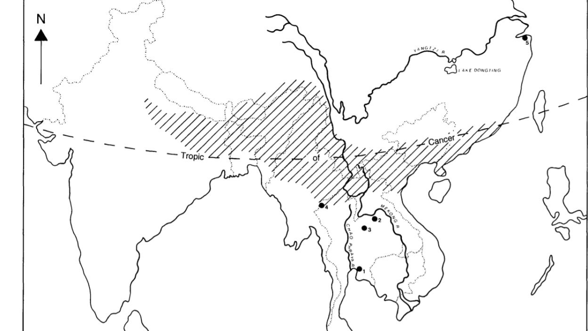 The shaded area in the zone where Chang proposed rice might have originated