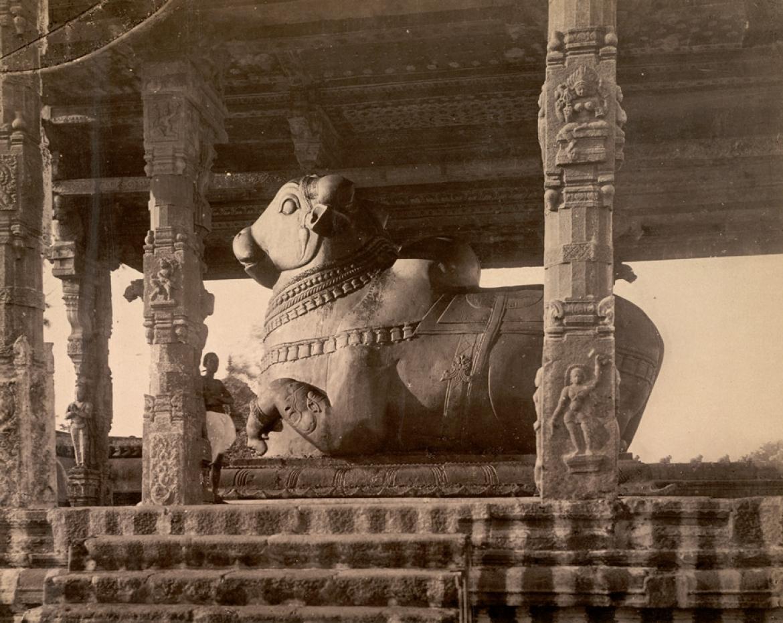 The Nandi statue at the pavilion