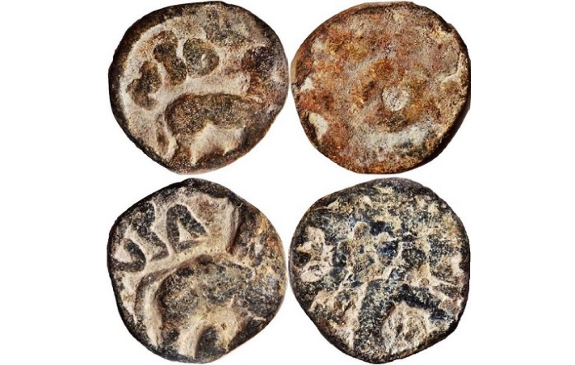 Coins of the Ikshavakus