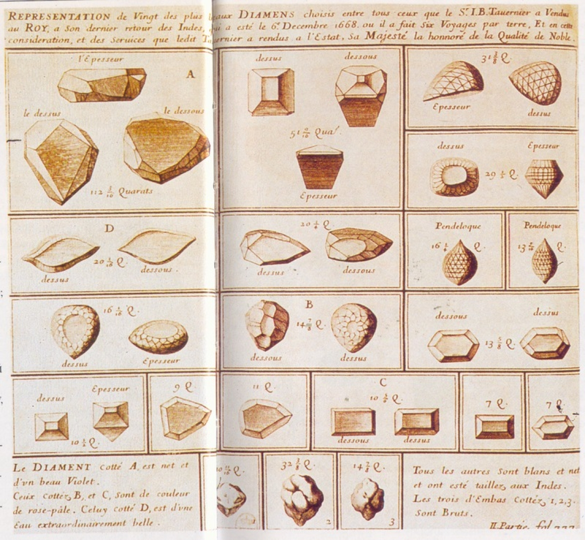 Tavernier's sketches of the different gems he brought back to France from Golconda (Gem A is the Tavernier Blue Diamond)