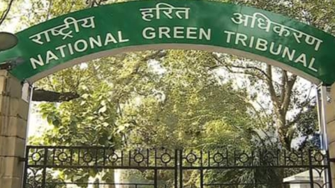 NGT raps Delhi pollution control panel over air quality