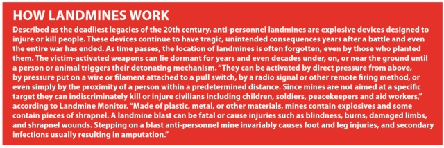 India's morbid  obsession with  landmines