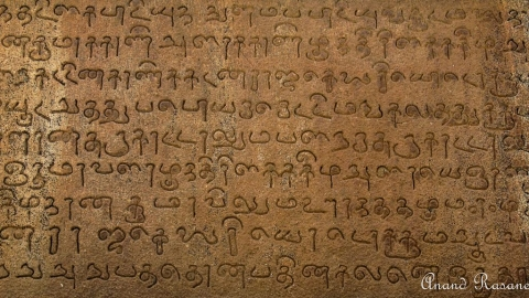 Tamil, Kannada, Malayalam, Telugu originated 4,500 years ago