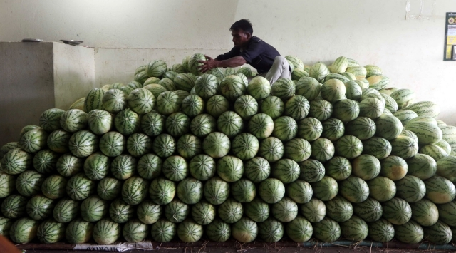 A fruit seller sits on a stack of watermelons - the demand for which shoots up during summers - as he arranges them at a market in Chennai.