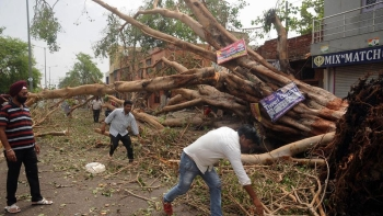 File photo of people clearing the road that was blocked by a tree which fell during  storm