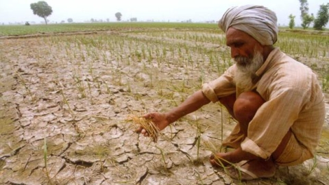 MSP hike leaves farmers & Yogendra Yadav cold