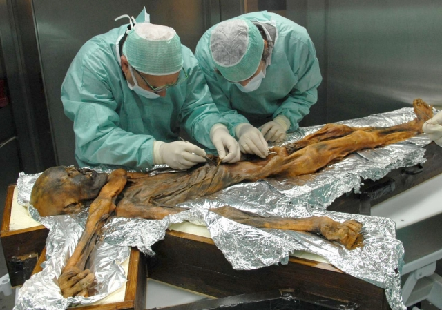 The 5,300-year-old Otzi the Iceman seemed to have been fully aware that fat represents an excellent energy source.