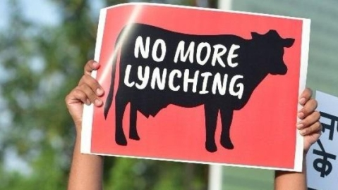 Rabid mobs ruling India's roost, but Modi govt denies us a law on lynching
