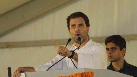 Rahul Gandhi on marriage plans: 'I'm wedded to the Congress'