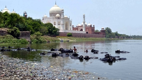 Yamuna pollution: Cycle yatra from Agra's Taj to Delhi's India Gate