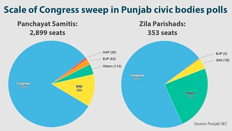 After massive Congress victory in Punjab civic polls, Lok Sabha sweep expected