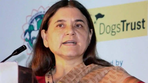 Maneka Gandhi on #MeToo: A committee of senior judges should look into all the cases