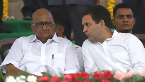 "Sharad Pawar: ""I did not support PM Narendra Modi and won't do that"""