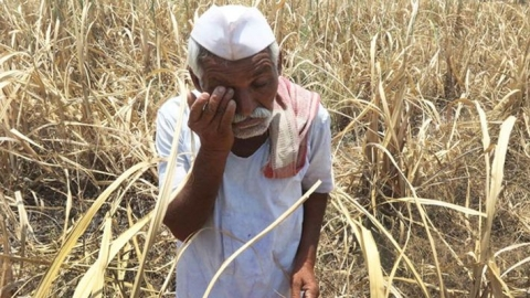Farmers were badly affected by demonetisation, admits Agriculture Ministry