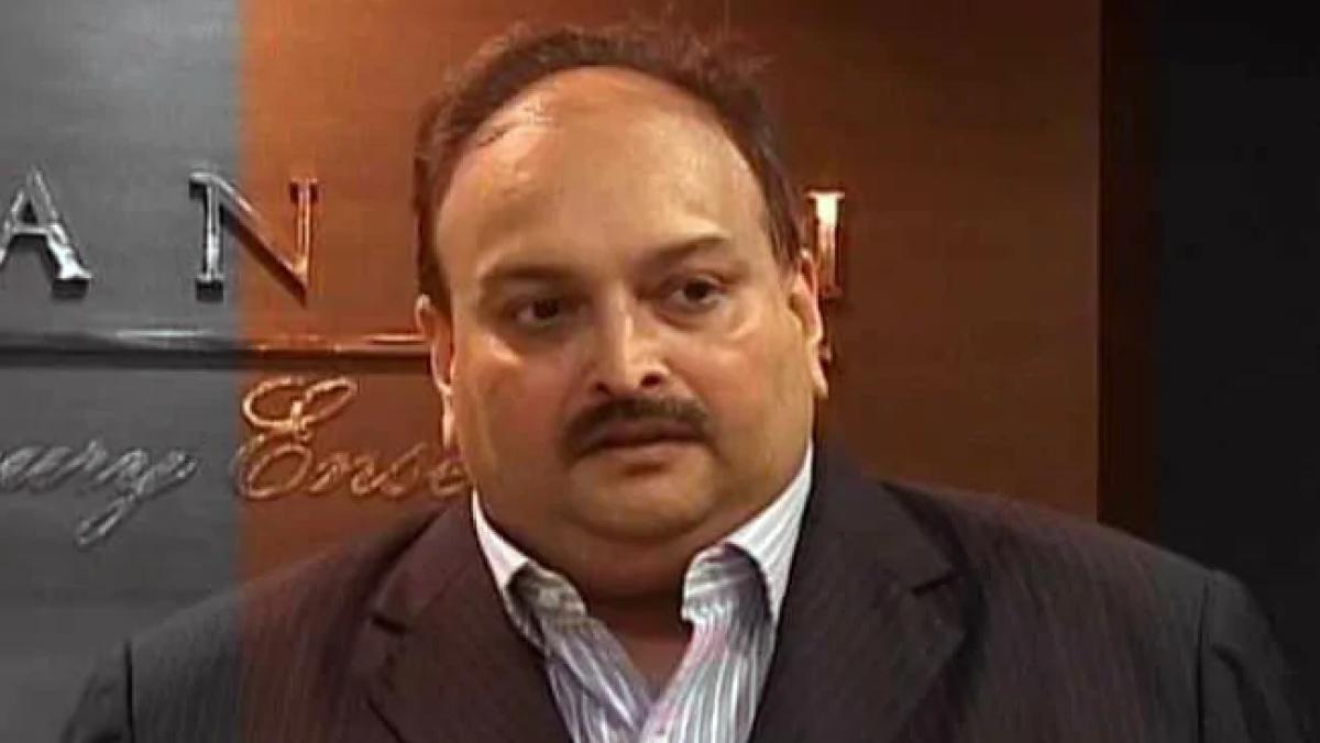 PNB case: ED attaches Choksi properties worth ₹24 crore