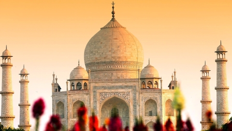 Now a Taj Mahal of plastic/polythene in Agra by green activist