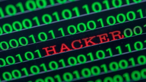Germany: Hacker behind massive data leak identified, arrested