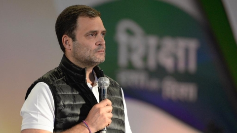 Rahul Gandhi: Modi govt doesn't want to accept there is 'job crisis'