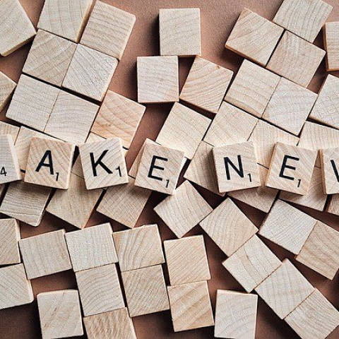People below 20 and above 50 likely to believe fake news, says survey