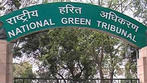 NGT grants more time to ICD Tughlakabad to submit action plan on phasing out diesel vehicles