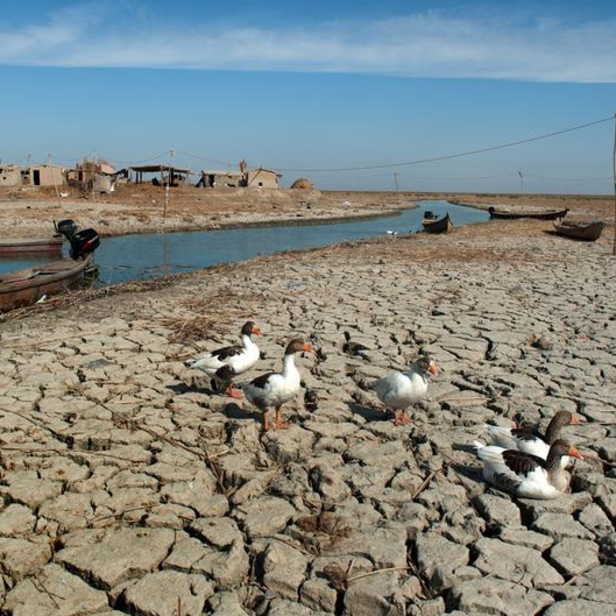 World's poor pay more for water than the rich