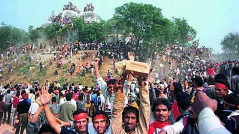 BJP, not historical facts played big role in Babri Masjid demolition says historian Irfan Habib