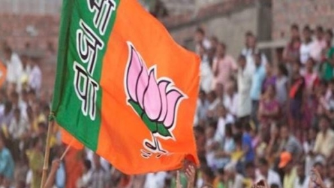 Madhya Pradesh: Two rebel BJP MPs file nomination as independent candidates, won't campaign for BJP