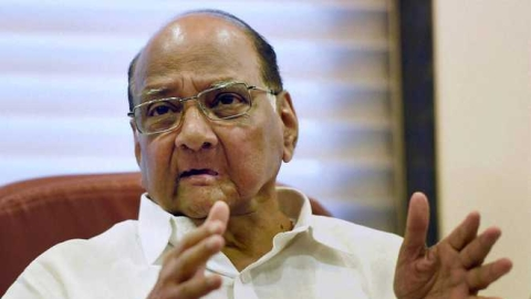 I accept defeat gracefully, won't blame EVMs says NCP Chief Sharad Pawar