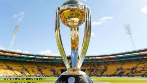 Fans will get live coverage of the World Cup on Twitter at #CWC19