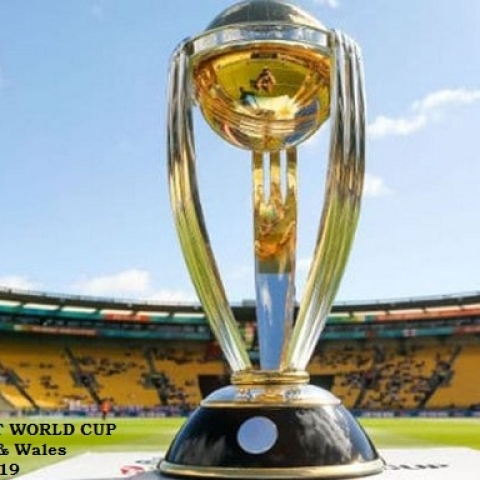 ICC World Cup Trophy (Social Media)