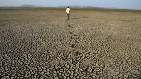 Delayed monsoon has created drought-like situation in Andhra  Pradesh
