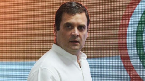 Rahul Gandhi seeks setting up of single-window system for reissuance of documents lost by Ker flood victims