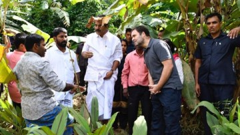 Rahul Gandhi assures to resolve problems facing flood-hit in Wayanad