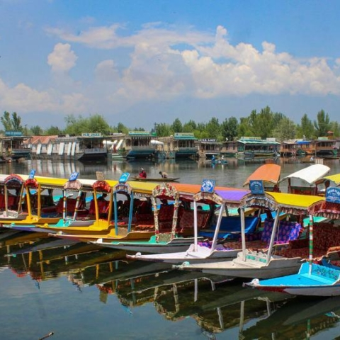 Empty shikaras docked in the Dal lake tell a story of a ruined tourist season. For lakhs of people in Kashmir, tourism is the only means of their livelihood (PTI photo).