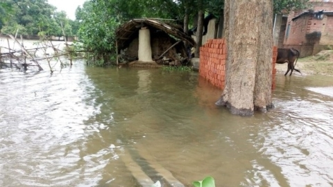 300,000 people displaced by flood in perennially parched Bundelkhand but  leaders can't care less