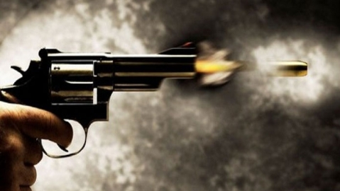 RSS activists brandish guns, open fire at a function in UP