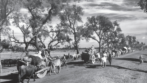 Visuals from the partition of India in 1947