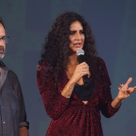 Katrina Kaif and Aanand L Rai set to work on a Korean film remake