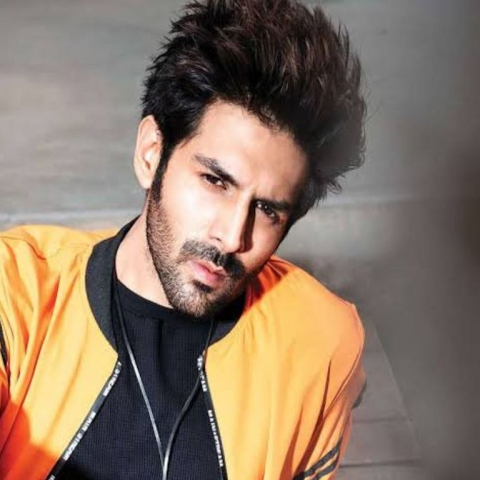 The rise of Kartik Aryan, trade analysts speak